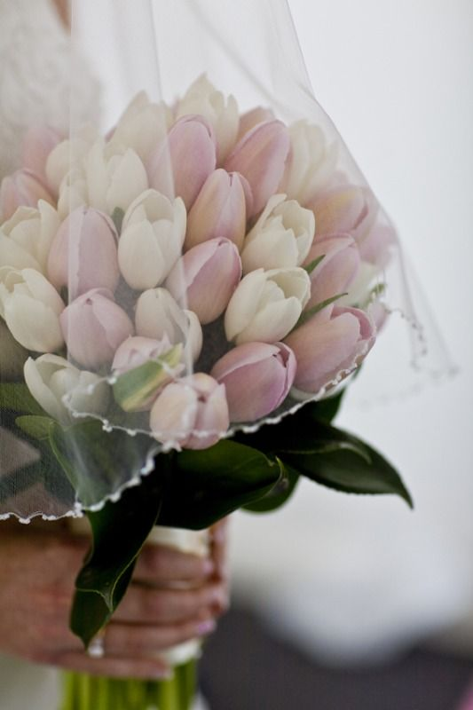 White and pink tulip bouquet